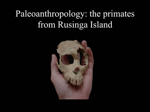 Paleoanthropology1